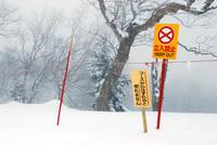 DSC_0047横手山.JPG