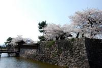DSC_0088海津城.JPG
